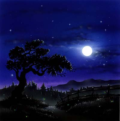... night is a little more complicated you see in the country the night  Night