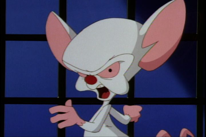 Pinky and the Brain | Lucien Maverick's Blog