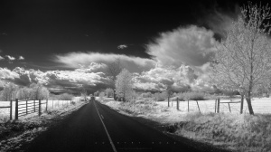 Country Road, by Greg Martin